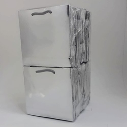 - 11*11 Karton Çanta 50'li Gümüş