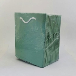 - 14*17 Karton Çanta 25'li Mint Yeşili